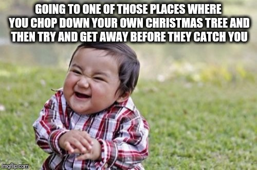 Evil Toddler Meme | GOING TO ONE OF THOSE PLACES WHERE YOU CHOP DOWN YOUR OWN CHRISTMAS TREE AND THEN TRY AND GET AWAY BEFORE THEY CATCH YOU | image tagged in memes,evil toddler | made w/ Imgflip meme maker