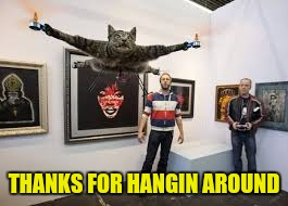 THANKS FOR HANGIN AROUND | image tagged in cat drone | made w/ Imgflip meme maker