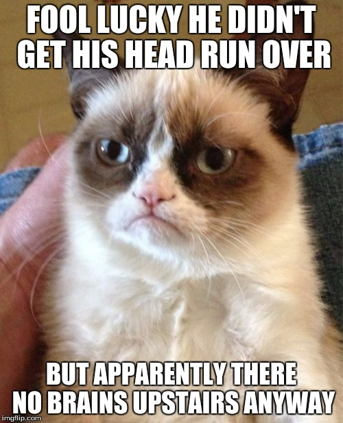 Grumpy Cat Meme | FOOL LUCKY HE DIDN'T GET HIS HEAD RUN OVER BUT APPARENTLY THERE NO BRAINS UPSTAIRS ANYWAY | image tagged in memes,grumpy cat | made w/ Imgflip meme maker
