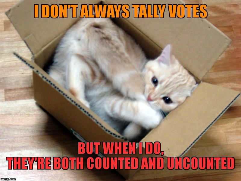 Cat in a Box | I DON'T ALWAYS TALLY VOTES BUT WHEN I DO,             THEY'RE BOTH COUNTED AND UNCOUNTED | image tagged in cat in a box | made w/ Imgflip meme maker