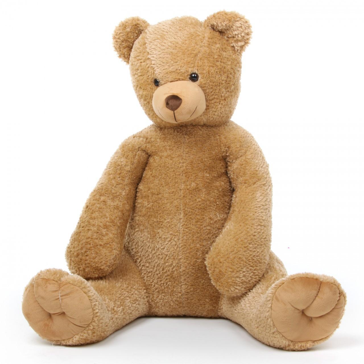 Teddy Bear Template | Teddy Bear Blank Template Imgflip