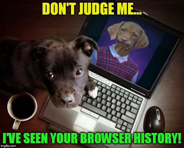 Browsing Raydog ( A Coolermommy2.0 Template ) | DON'T JUDGE ME... I'VE SEEN YOUR BROWSER HISTORY! | image tagged in raydog on the computer,memes,funny,raydog,browsing history,laughs | made w/ Imgflip meme maker