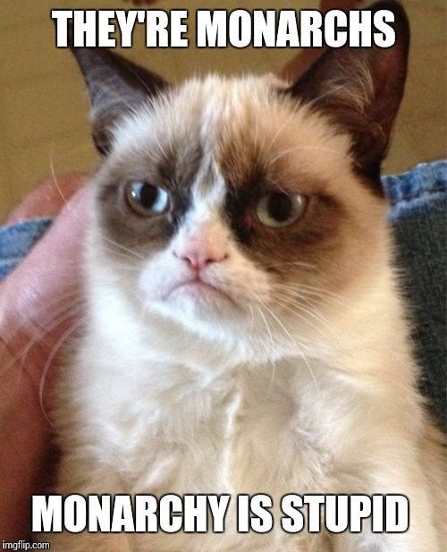 Grumpy Cat Meme | THEY'RE MONARCHS MONARCHY IS STUPID | image tagged in memes,grumpy cat | made w/ Imgflip meme maker