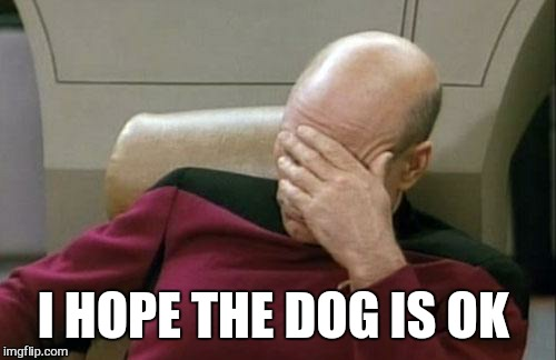 Captain Picard Facepalm Meme | I HOPE THE DOG IS OK | image tagged in memes,captain picard facepalm | made w/ Imgflip meme maker