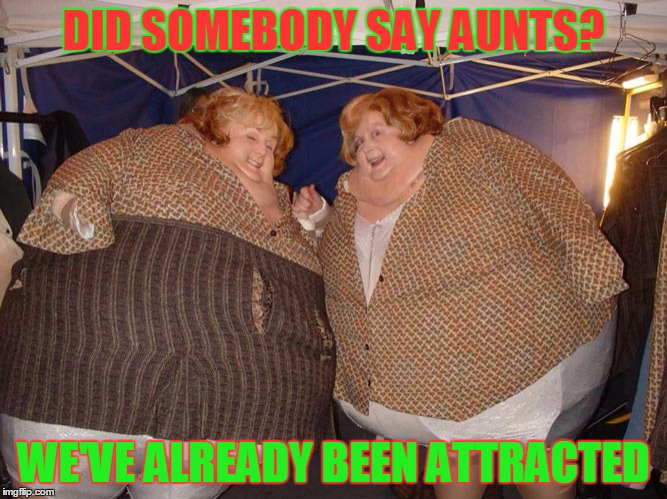 DID SOMEBODY SAY AUNTS? WE'VE ALREADY BEEN ATTRACTED | made w/ Imgflip meme maker