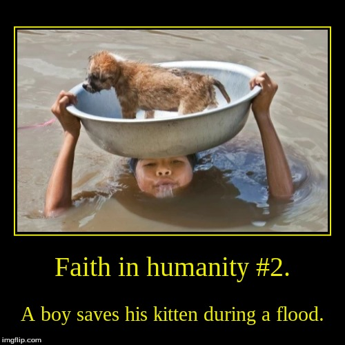 That's probably cold yo. | Faith in humanity #2. | A boy saves his kitten during a flood. | image tagged in funny,demotivationals,kitten | made w/ Imgflip demotivational maker