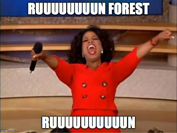 Oprah You Get A Meme | RUUUUUUUUN FOREST RUUUUUUUUUUN | image tagged in memes,oprah you get a | made w/ Imgflip meme maker