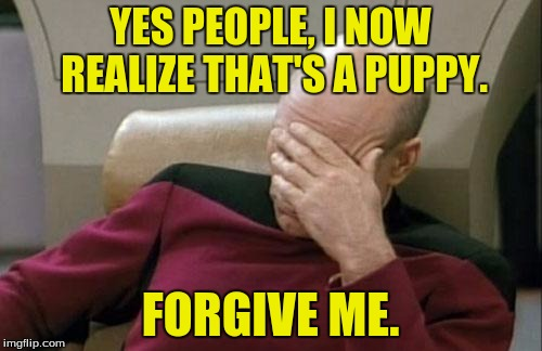Captain Picard Facepalm Meme | YES PEOPLE, I NOW REALIZE THAT'S A PUPPY. FORGIVE ME. | image tagged in memes,captain picard facepalm | made w/ Imgflip meme maker