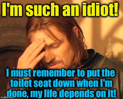 I'm such an idiot! I must remember to put the toilet seat down when I'm done, my life depends on it! | made w/ Imgflip meme maker