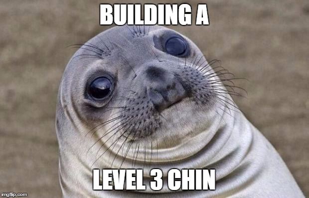 Awkward Moment Sealion | BUILDING A LEVEL 3 CHIN | image tagged in memes,awkward moment sealion | made w/ Imgflip meme maker
