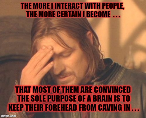Boromir on stupidity | THE MORE I INTERACT WITH PEOPLE, THE MORE CERTAIN I BECOME  . . . THAT MOST OF THEM ARE CONVINCED THE SOLE PURPOSE OF A BRAIN IS TO KEEP THE | image tagged in memes,frustrated boromir,stupidity | made w/ Imgflip meme maker