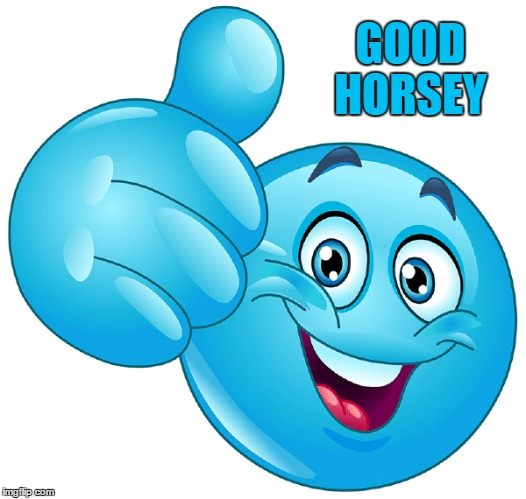 GOOD HORSEY | made w/ Imgflip meme maker