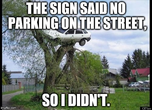 Secure Parking Meme | THE SIGN SAID NO PARKING ON THE STREET, SO I DIDN'T. | image tagged in memes,secure parking | made w/ Imgflip meme maker