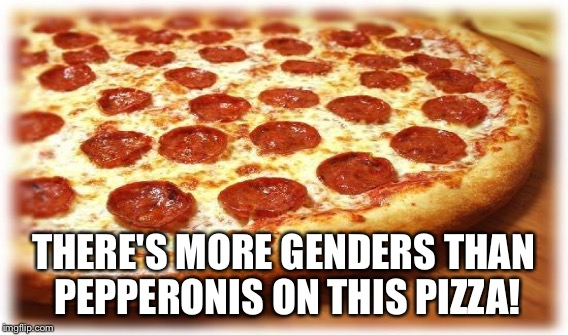 THERE'S MORE GENDERS THAN PEPPERONIS ON THIS PIZZA! | made w/ Imgflip meme maker