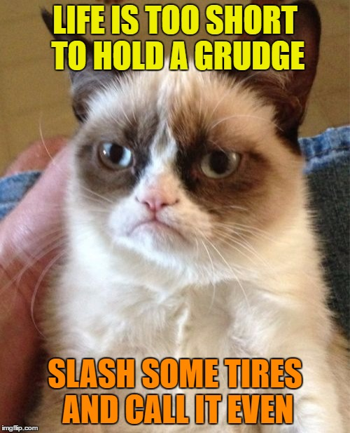 Don't hold a grudge | LIFE IS TOO SHORT TO HOLD A GRUDGE SLASH SOME TIRES AND CALL IT EVEN | image tagged in memes,grumpy cat,funny,life,grudge,slash | made w/ Imgflip meme maker