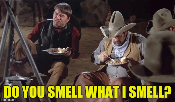 Not so silent night |  DO YOU SMELL WHAT I SMELL? | image tagged in blazing saddles,fart,do you smell what i smell | made w/ Imgflip meme maker