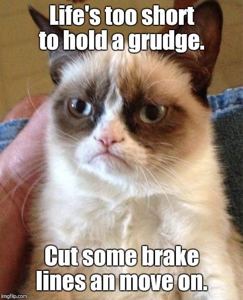 Grumpy Cat Meme | Life's too short to hold a grudge. Cut some brake lines an move on. | image tagged in memes,grumpy cat | made w/ Imgflip meme maker