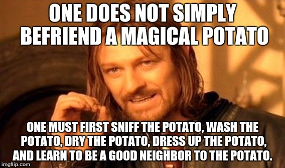 This came up to me on the top of my head so don't blame me if it's stupid | ONE DOES NOT SIMPLY BEFRIEND A MAGICAL POTATO ONE MUST FIRST SNIFF THE POTATO, WASH THE POTATO, DRY THE POTATO, DRESS UP THE POTATO, AND LEA | image tagged in memes,one does not simply,magical potato,friend,absurd,funny | made w/ Imgflip meme maker