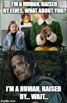 Humans raised by elves |  I'M A HUMAN, RAISED BY ELVES, WHAT ABOUT YOU? I'M A HUMAN, RAISED BY... WAIT... | image tagged in buddy the elf,aragorn,crossover | made w/ Imgflip meme maker