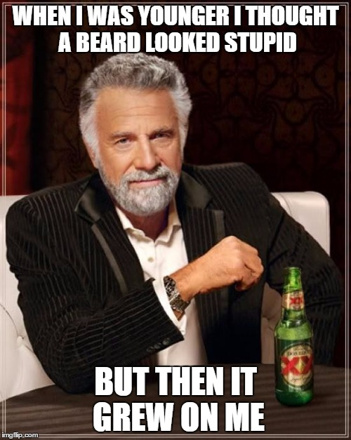 The Most Interesting Man In The World Meme | WHEN I WAS YOUNGER I THOUGHT A BEARD LOOKED STUPID BUT THEN IT GREW ON ME | image tagged in memes,the most interesting man in the world | made w/ Imgflip meme maker
