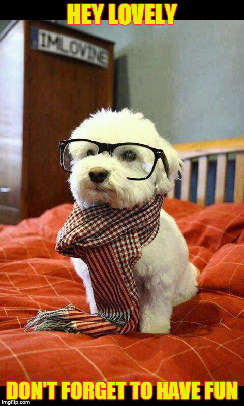 Intelligent Dog |  HEY LOVELY; DON'T FORGET TO HAVE FUN | image tagged in memes,intelligent dog | made w/ Imgflip meme maker