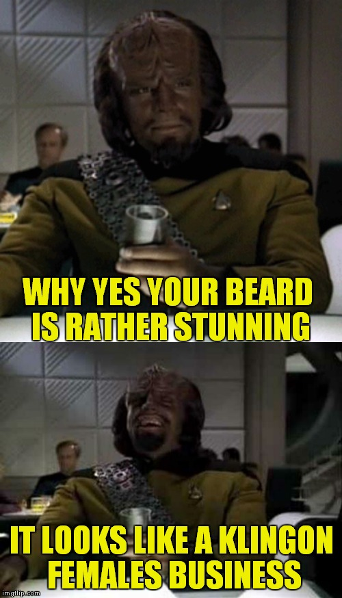 WHY YES YOUR BEARD IS RATHER STUNNING IT LOOKS LIKE A KLINGON FEMALES BUSINESS | made w/ Imgflip meme maker