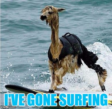 I'VE GONE SURFING | made w/ Imgflip meme maker