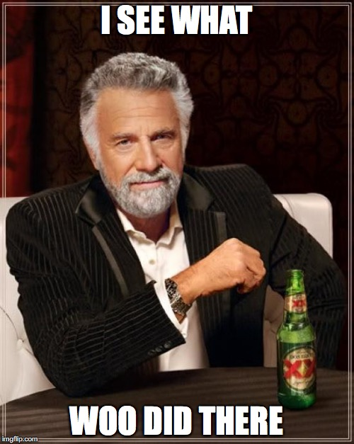 The Most Interesting Man In The World Meme | I SEE WHAT WOO DID THERE | image tagged in memes,the most interesting man in the world | made w/ Imgflip meme maker