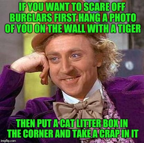 Creepy Condescending Wonka Meme | IF YOU WANT TO SCARE OFF BURGLARS FIRST HANG A PHOTO OF YOU ON THE WALL WITH A TIGER THEN PUT A CAT LITTER BOX IN THE CORNER AND TAKE A CRAP | image tagged in memes,creepy condescending wonka | made w/ Imgflip meme maker