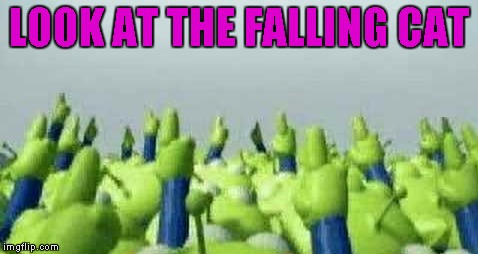 LOOK AT THE FALLING CAT | made w/ Imgflip meme maker