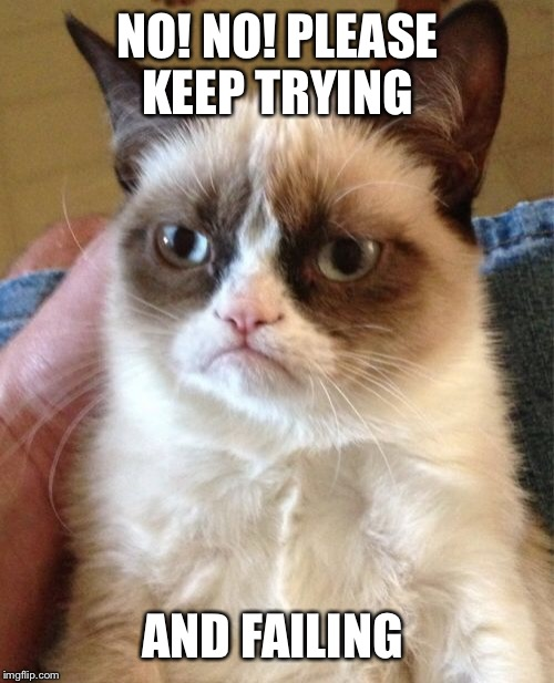 Grumpy Cat Meme | NO! NO! PLEASE KEEP TRYING AND FAILING | image tagged in memes,grumpy cat | made w/ Imgflip meme maker