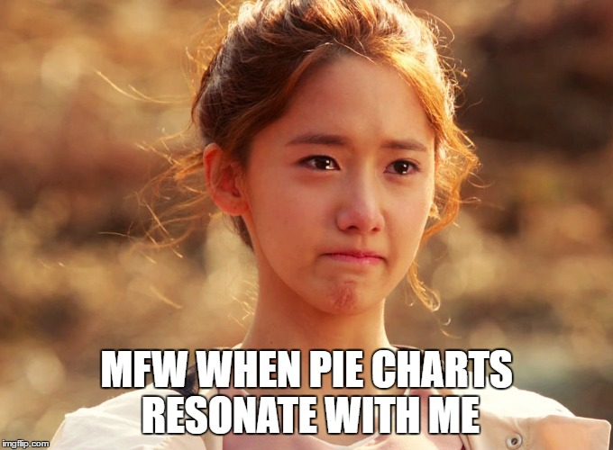 Yoona Crying | MFW WHEN PIE CHARTS RESONATE WITH ME | image tagged in yoona crying | made w/ Imgflip meme maker