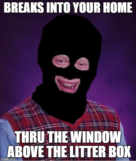 BREAKS INTO YOUR HOME THRU THE WINDOW ABOVE THE LITTER BOX | made w/ Imgflip meme maker