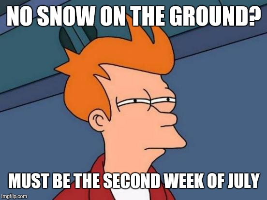 Futurama Fry Meme | NO SNOW ON THE GROUND? MUST BE THE SECOND WEEK OF JULY | image tagged in memes,futurama fry | made w/ Imgflip meme maker