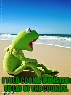 I TOLD COOKIE MONSTER TO LAY OF THE COOKIES. | made w/ Imgflip meme maker