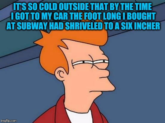 Futurama Fry Meme | IT'S SO COLD OUTSIDE THAT BY THE TIME I GOT TO MY CAR THE FOOT LONG I BOUGHT AT SUBWAY HAD SHRIVELED TO A SIX INCHER | image tagged in memes,futurama fry | made w/ Imgflip meme maker