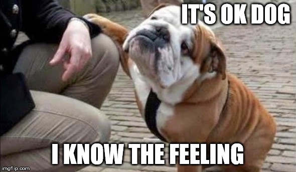 There There Dog | IT'S OK DOG I KNOW THE FEELING | image tagged in there there dog | made w/ Imgflip meme maker