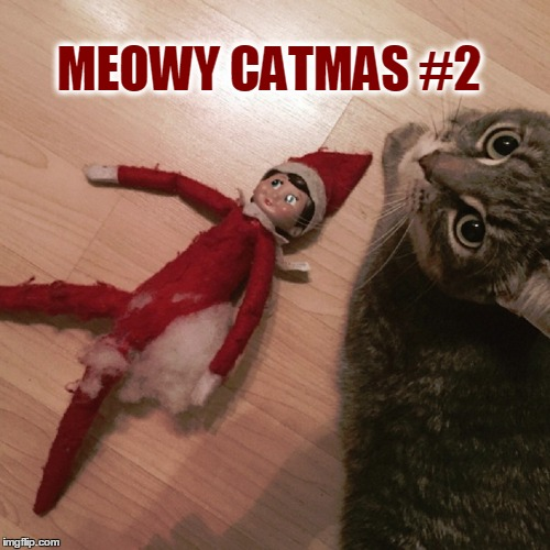 Go Elf Yourself | MEOWY CATMAS #2 | image tagged in meme,christmas,happy holidays,putting the meow back in christmas,good kitty | made w/ Imgflip meme maker