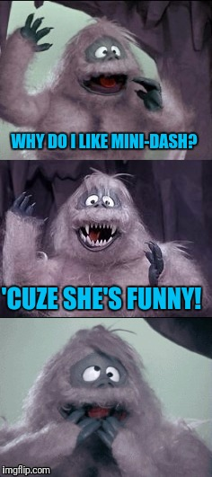 Bumble's Joke | WHY DO I LIKE MINI-DASH? 'CUZE SHE'S FUNNY! | image tagged in bumble's joke | made w/ Imgflip meme maker