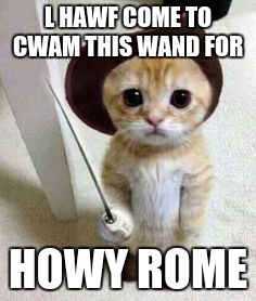 Cute cat | L HAWF COME TO CWAM THIS WAND FOR HOWY ROME | image tagged in cute cat | made w/ Imgflip meme maker