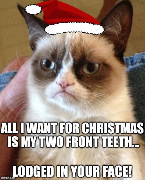 All I want for Christmas... | ALL I WANT FOR CHRISTMAS IS MY TWO FRONT TEETH... LODGED IN YOUR FACE! | image tagged in memes,grumpy cat,christmas,teeth,in your face | made w/ Imgflip meme maker