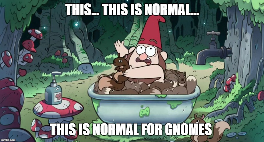 The less people know about your culture, the more weirdness you can get away with... |  THIS... THIS IS NORMAL... THIS IS NORMAL FOR GNOMES | image tagged in normal for gnomes,gravity falls,memes,funny memes | made w/ Imgflip meme maker