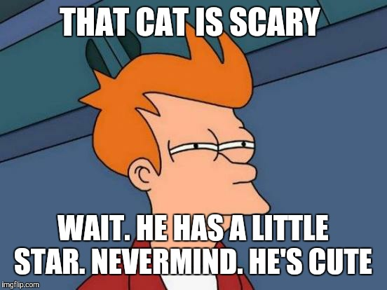 Futurama Fry Meme | THAT CAT IS SCARY WAIT. HE HAS A LITTLE STAR. NEVERMIND. HE'S CUTE | image tagged in memes,futurama fry | made w/ Imgflip meme maker