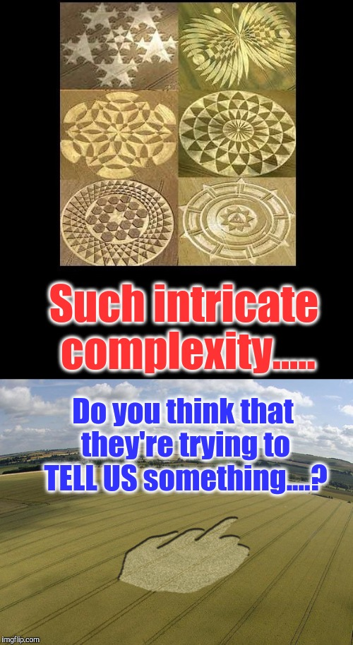 Apparently....not big fans of the NEO-ULTRA-NATIVIST immigration policy. |  Such intricate complexity..... Do you think that they're trying to TELL US something....? | image tagged in crop circles,trump 2016,dumptrump,illegal aliens,ancient aliens donald trump | made w/ Imgflip meme maker