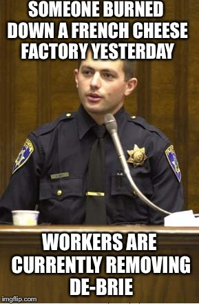 Police officer pun | SOMEONE BURNED DOWN A FRENCH CHEESE FACTORY YESTERDAY WORKERS ARE CURRENTLY REMOVING DE-BRIE | image tagged in memes,police officer testifying | made w/ Imgflip meme maker