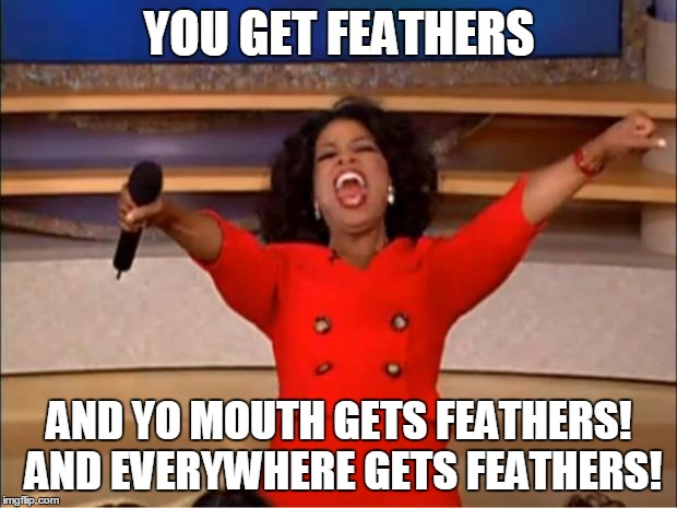 Oprah You Get A Meme | YOU GET FEATHERS AND YO MOUTH GETS FEATHERS! AND EVERYWHERE GETS FEATHERS! | image tagged in memes,oprah you get a | made w/ Imgflip meme maker