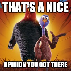 When someone states ther opinion like its the facts | THAT'S A NICE OPINION YOU GOT THERE | image tagged in free birds | made w/ Imgflip meme maker