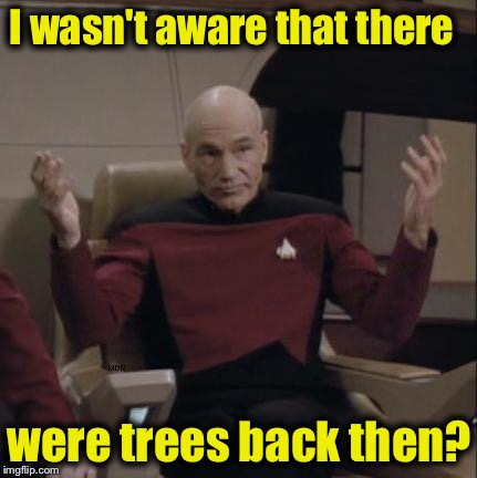 I wasn't aware that there were trees back then? | made w/ Imgflip meme maker