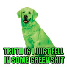 TRUTH IS I JUST FELL IN SOME GREEN SHIT | made w/ Imgflip meme maker