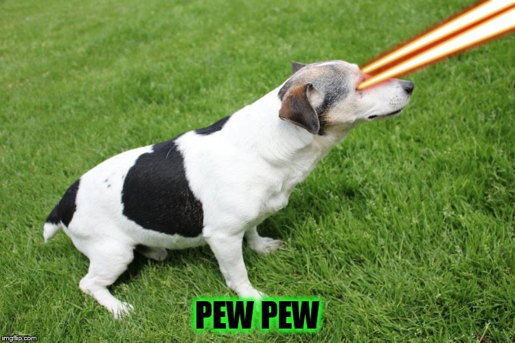 PEW PEW | made w/ Imgflip meme maker